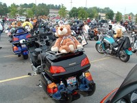 Highlight for Album: Cleveland Teddy Bear Run, 2004